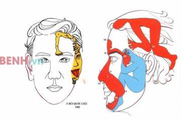 Chữa bệnh bằng phương pháp xoa mặt – Phương pháp chữa bệnh thần kỳ