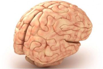 Chẩn đoán, xử trí chấn thương sọ não kín
