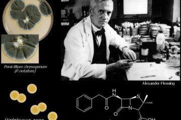 Lịch sử ra đời thuốc kháng sinh, làm thế nào để sử dụng kháng sinh có hiệu quả