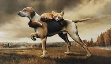 Lương thiện là một sự lựa chọn: Bài học từ Chó và Hồ Ly