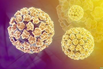 Bệnh do virus HPV là bệnh gì?