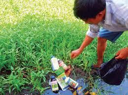 Cấp cứu ngộ độc các hóa chất bảo vệ thực vật