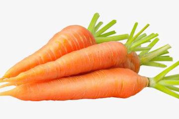 Top 10 loại rau củ bổ dưỡng nhất
