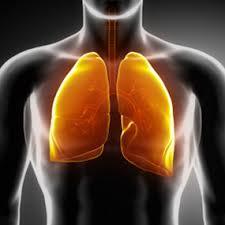 Phát hiện có sự liên quan di truyền, hút thuốc và bệnh phổi tắc nghẽn