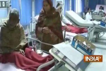 Bùng phát dịch cúm lợn tại Ấn Độ