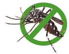 Lưu ý khi sử dụng thuốc diệt côn trùng trong nhà