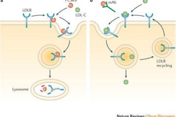 3 đột biến gen thân thiện với con người