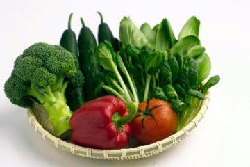 10 dưỡng chất cần thiết giúp trẻ phát triển toàn diện