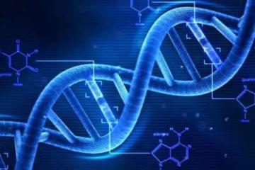 Rối loạn hiếm về gen: Nhiều bé gái cứ đến 12 tuổi lại biến thành trai