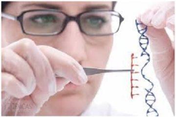 Giải pháp chỉnh sửa gen trong điều trị thiếu máu hồng cầu lưỡi liềm