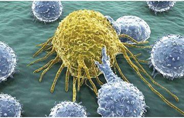 Giới thiệu liệu pháp miễn dịch điều trị ung thư