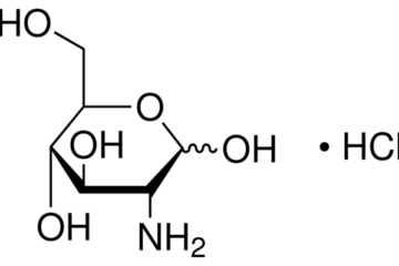 Glucosamine & Chondroitin với bệnh viêm xương khớp mạn tính