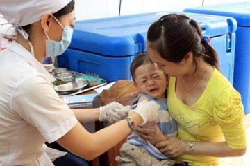 Hà Nội: Số người mắc viêm não Nhật Bản đang gia tăng