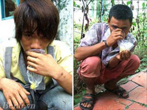 Giới trẻ hít keo con chó – nguy hiểm khôn lường – giamcanlamdep.com.vn