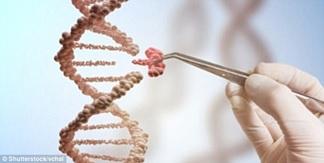 Chỉnh sửa gen: Hy vọng mới giúp bệnh nhân ung thư máu thoát án tử