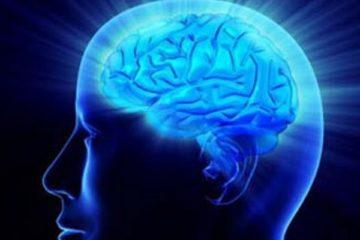 Nghiên cứu mới thấy não vẫn hoạt động sau khi cơ thể chết
