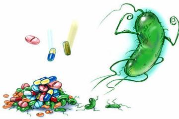 Gia tăng tình trạng kháng kháng sinh trên toàn cầu