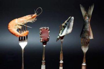 Những lưu ý cần biết khi chế biến hải sản