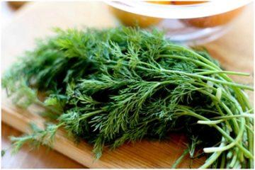Mùi tây và rau thì là được điều chế thành thuốc chữa ung thư