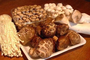 Top thực phẩm bảo vệ sức khoẻ khi trời chuyển lạnh