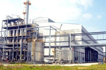 Giải pháp thoát lỗ cho các nhà máy nhiên liệu sinh học tại Việt Nam