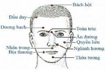 Nhận biết vị trí các huyệt trên khuôn mặt để điều trị bệnh
