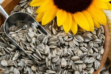 Những thực phẩm giàu vitamin ngừa bệnh lão hóa mắt