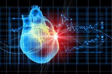 Phát triển thành công miếng dán giúp phục hồi cơ tim
