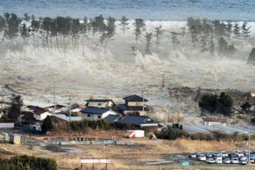 Kỹ năng xử lý khi có sóng thần