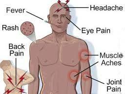 Dấu hiệu của bệnh sốt virus và cách chăm sóc người bệnh