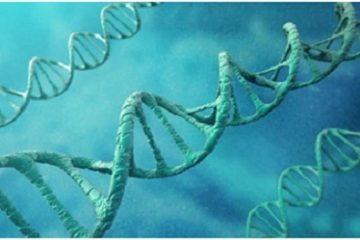 Đột phá: Sử dụng liệu pháp gen để điều trị Alzheimer