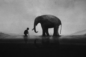 Sự gắn kết đặc biệt giữa trẻ em và động vật hoang dã