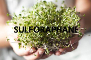 Tác dụng của hợp chất sulforaphane trong bông cải xanh đối với người tự kỷ