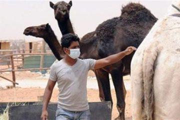 Hiểu để phòng ngừa căn bệnh nguy hiểm – suy hô hấp vùng Trung Đông