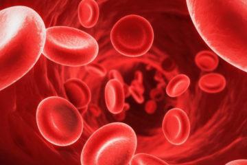 Những hiểu biết cơ bản về thiếu máu
