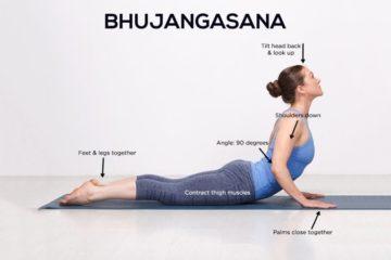 Yoga và những bài tập cơ bản