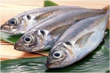 Thực hư việc ăn cá biển nguy hại cho đàn ông
