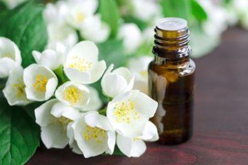 Lợi ích tuyệt vời của tinh dầu hoa nhài đối với sức khỏe