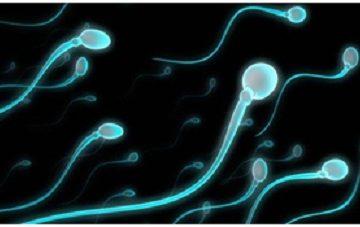 Mách nhỏ: Tinh dịch của quý ông có thể chữa bách bệnh