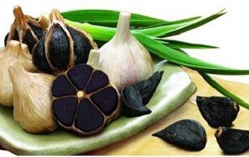 Tác dụng của tỏi đen và đông trùng hạ thảo đối với sức khỏe
