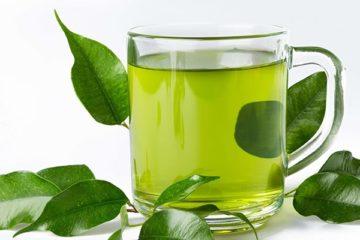 Cách dùng trà xanh hiệu quả trong phòng bệnh và chữa bệnh