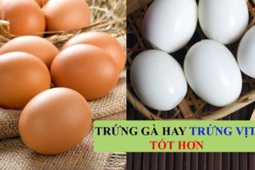 Bà bầu nên ăn trứng gà hay trứng vịt tốt hơn?