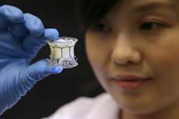 Singapore: Bước tiến mới trong việc chế tạo van tim nhân tạo