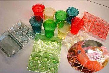 Chế tạo thành công nhựa sinh học được tổng hợp từ vỏ các loài động vật giáp xác, thân thiện với môi trường