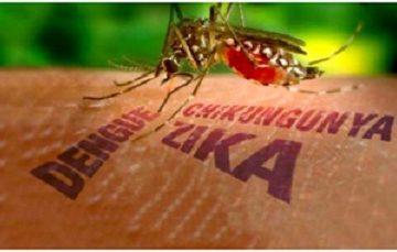 Xác nhận người thứ 4 mắc Zika tại Việt Nam là người Đức