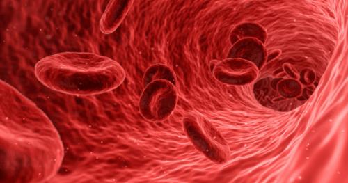 xét nghiệm hồng cầu