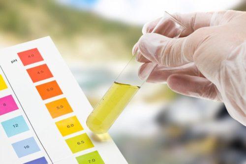 xét nghiệm nước tiểu thai kỳ