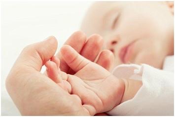 Ý: Miễn phí tiền phòng nếu thụ thai tại khách sạn