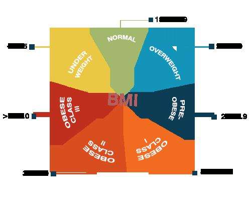 Chỉ số BMI của cơ thể