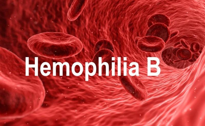 Bệnh máu khó đông - Hemophilia